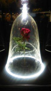 美女と野獣のバラ